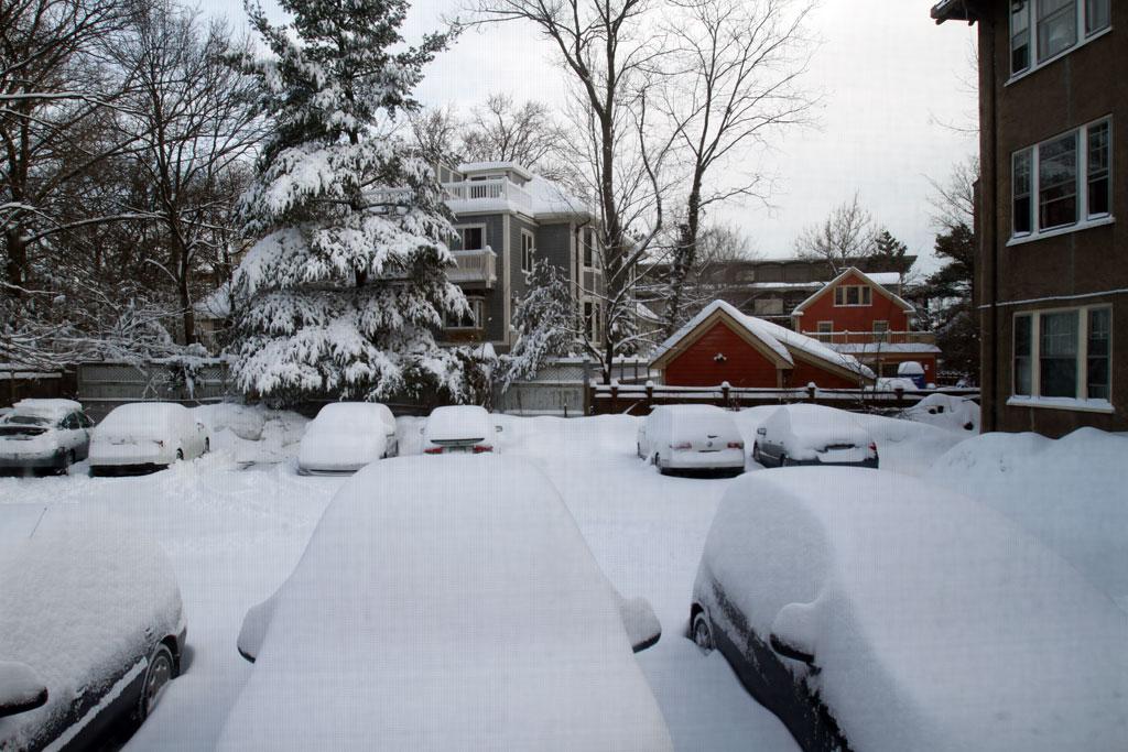 View from my window, Cambridge